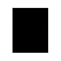 Amanora Park Town Logo